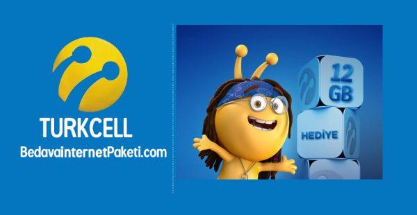 Turkcell Haydi Gel 12 GB Bedava internet Kampanyası